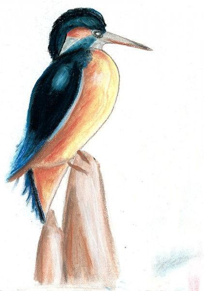 Oiseau au pastel 3