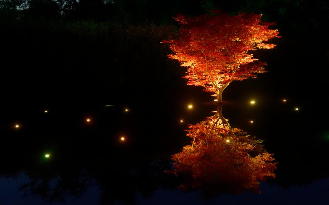 Le festival des jardins à Chaumont sur Loire en nocturne