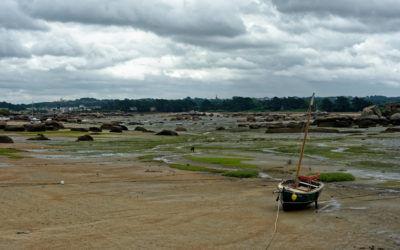 Ile Renote à Trégastel – Bretagne